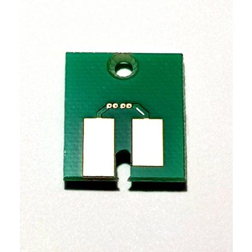 SS21 Light Magenta Chip